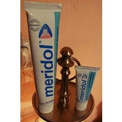 Zahnpasta Zahnfleischschutz von Meridol