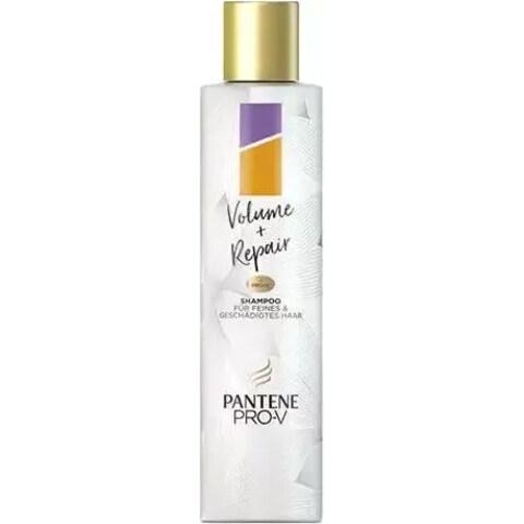 Volume + Repair - Shampoo von Pantene Pro-V